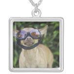 Chihuahua wearing goggles pendants