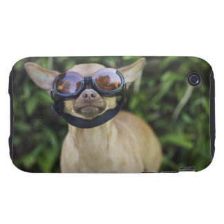 Chihuahua wearing goggles tough iPhone 3 covers