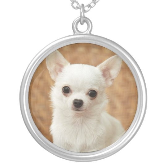 Chihuahua White Dog Necklace