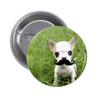 Chihuahua with Funny Mustache in Garden Button