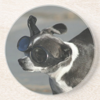 Chihuahua with Goggles Coaster