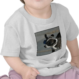 Chihuahua with goggles t shirt
