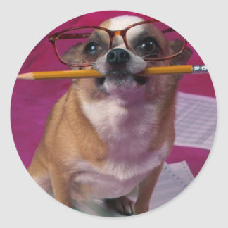 Chihuahua With Pencil Classic Round Sticker