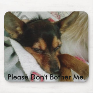 Chihuahua/Yorkie: Please Don't Bother Me. Mouse Pad