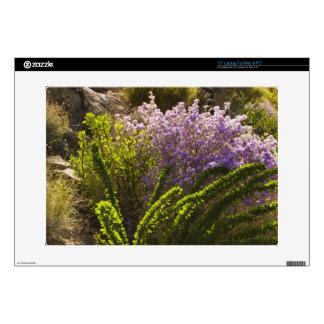 "Chihuahuan desert plants in bloom 15"" laptop skins"