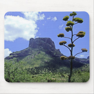 Chihuahuan Desert scene 02 Mouse Pad