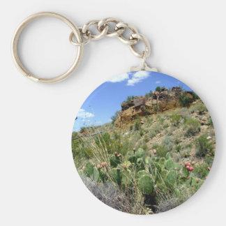 Chihuahuan Desert scene 05 Key Chains