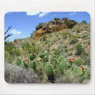 Chihuahuan Desert scene 05 Mouse Pad