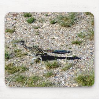 Chihuahuan Desert scene 09 road runner Mouse Pad