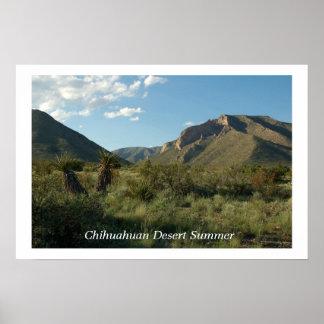 Chihuahuan Desert Summer Poster