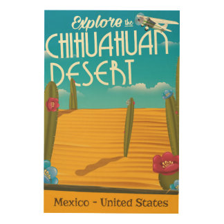 Chihuahuan Desert USA mexico travel poster