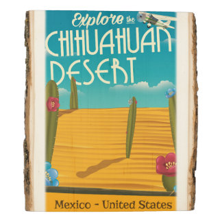 Chihuahuan Desert USA mexico travel poster Wood Panel