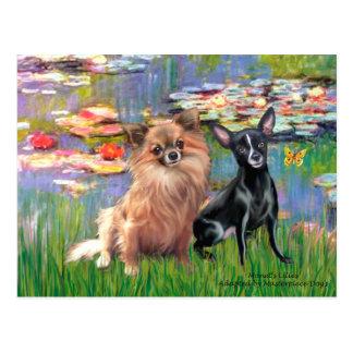 Chihuahuas 6 & 7 - Lilies 2 Postcard
