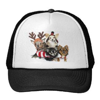 Chihuahuas del navidad gorro de camionero
