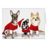 Chihuahuas del navidad tarjeta de felicitación