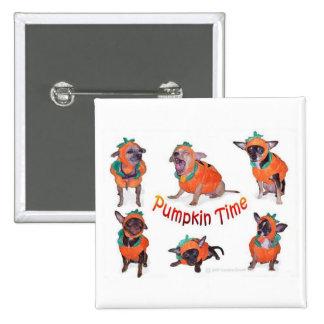 Chihuahuas del tiempo de la calabaza pin cuadrada 5 cm