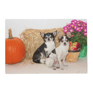 Chihuahua's in the fall placemat