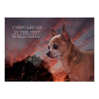 Chihuahuas in the Mist Poster