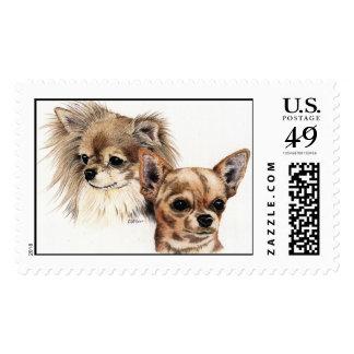 Chihuahuas largas y lisas de la capa timbres postales