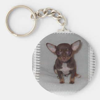 Chihuahua's Rule 1 Keychain