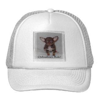 Chihuahua's Rule 1 Trucker Hat