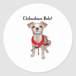 Chihuahuas Rule Classic Round Sticker