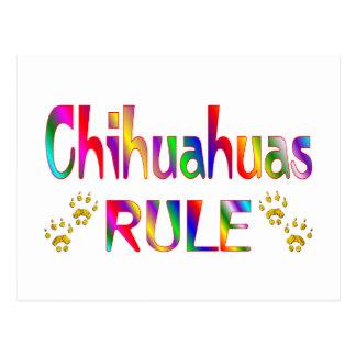 Chihuahuas Rule Postcard