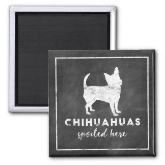 Chihuahuas Spoiled Here Vintage Chalkboard Magnet