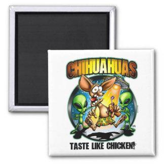 Chihuahuas Taste Like Chicken Magnet
