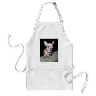 Chihuhahua Looking At You Adult Apron