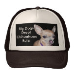 Chihuhahua Looking At You Hats