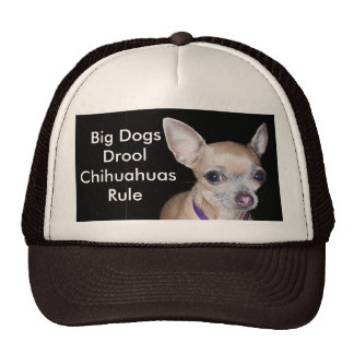 Chihuhahua Looking At You Trucker Hat