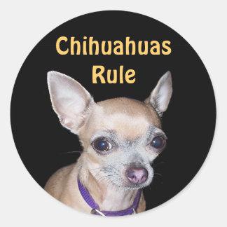 Chihuhahua que le mira pegatina redonda