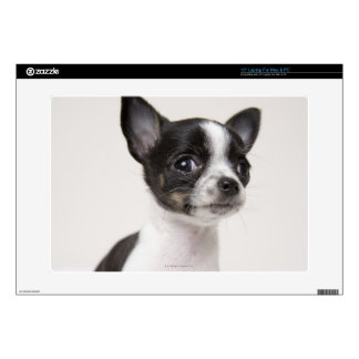 """Chihuhua puppy standing on white fabric decal for 15"""" laptop"""