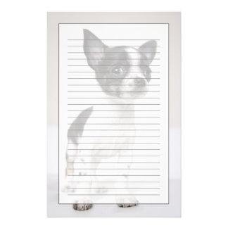 Chihuhua puppy standing on white fabric stationery