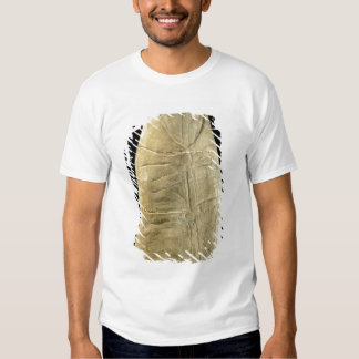 Child in swaddling clothes t shirt