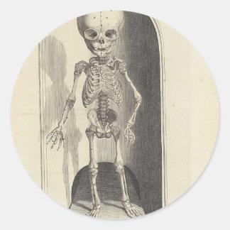 Child Skeleton Classic Round Sticker