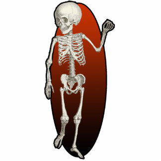 Child Skeleton Cutout Magnet Acrylic Cut Outs
