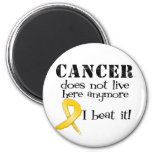 Childhood Cancer Does Not Live Here Anymore Refrigerator Magnets