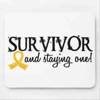 Childhood Cancer Survivor 18 Mouse Pad