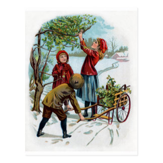 Children Collecting Holly in Winter Post Card