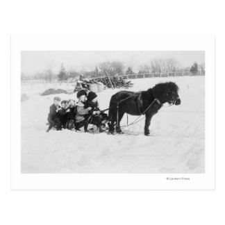 Children on Pony Drawn Sled Photograph Postcard