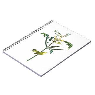 Children's Warbler John Audubon Birds of America Notebook