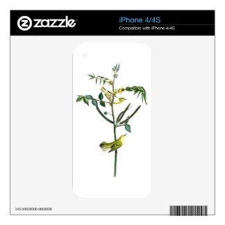 Children's Warbler John Audubon Birds of America Skin For The iPhone 4