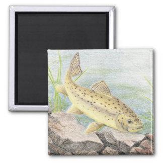 Children's Winning Artwork: apache trout 2 Inch Square Magnet