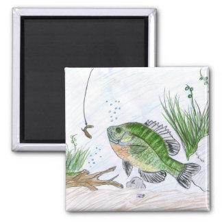 Children's Winning Artwork: bluegill 2 Inch Square Magnet