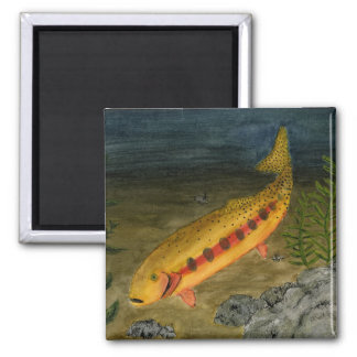 Children's Winning Artwork: golden trout 2 Inch Square Magnet