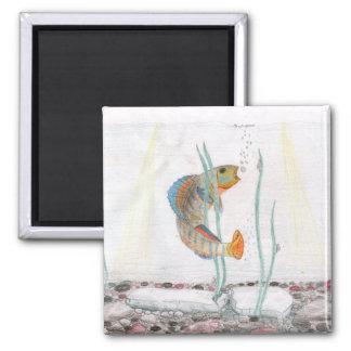 Children's Winning Artwork: rainbow darter 2 Inch Square Magnet