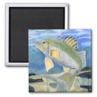 Children's Winning Artwork: white perch 2 Inch Square Magnet