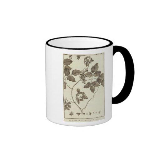 Chile 3 ringer coffee mug